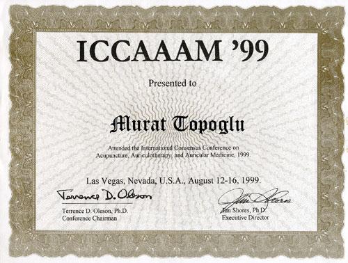 Dr. Murat Topoglu - Diploma 01