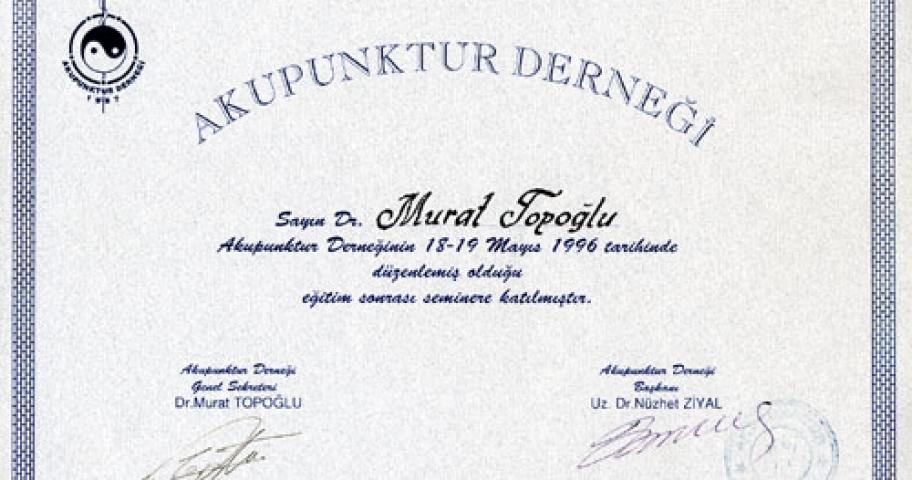 Dr. Murat Topoglu - Diploma 03