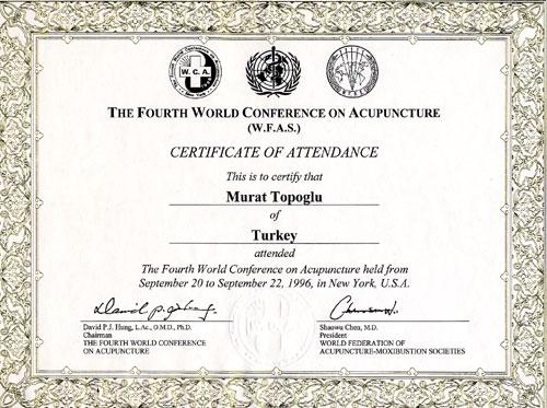 Dr. Murat Topoglu - Diploma 13