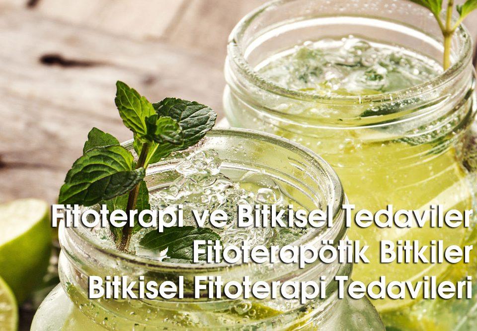 Fitoterapi ve Bitkisel Tedaviler
